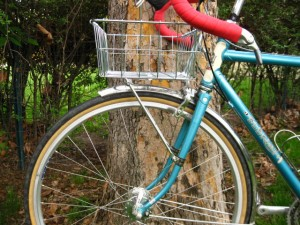 Wald Basket on a Nitto M-18 front rack