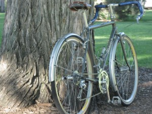 1/4 view of complete bike