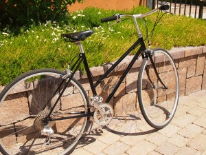 Profile of refurbished bike