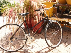 side view of schwinn mixte