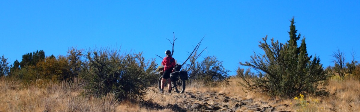Image of Bikepacking in the Owyhee desert